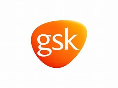 Gsk 3d Brands