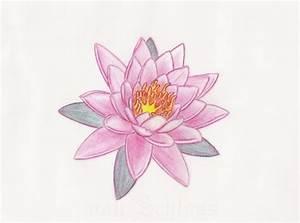 Pink Lotus Flower Tattoo Design by vonSchloss on DeviantArt