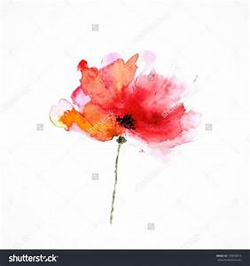 Pics For > Watercolor Single Flower