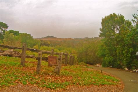 Mount Annan, New South Wales - Wikipedia