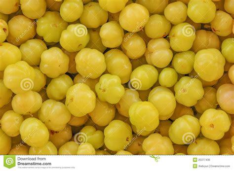 cuisine maquereau gooseberry royalty free stock image image 25377436