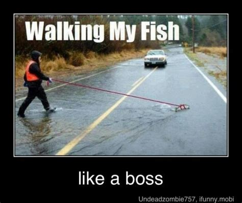 Fishing For Likes Meme - funny fishing memes bass fishing texas fishing forum