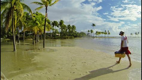 Mathison Hammock by King Tide Time Lapse At Matheson Hammock