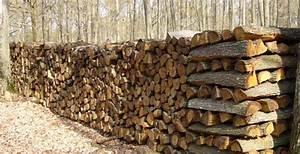 Bois De Chauffage Bricoman : vente de bois de chauffage et de charbon pas cher ~ Dailycaller-alerts.com Idées de Décoration