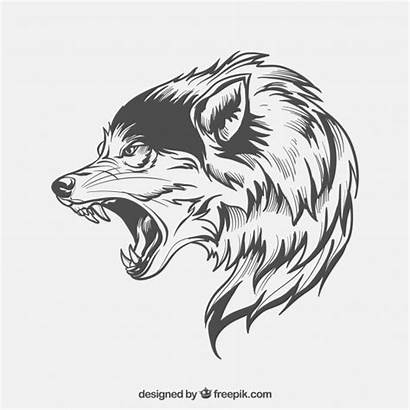 Wolf Vectors Vector Face Side