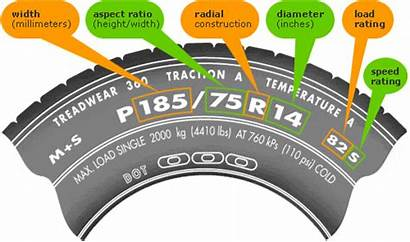 Tire Guide Sidewall