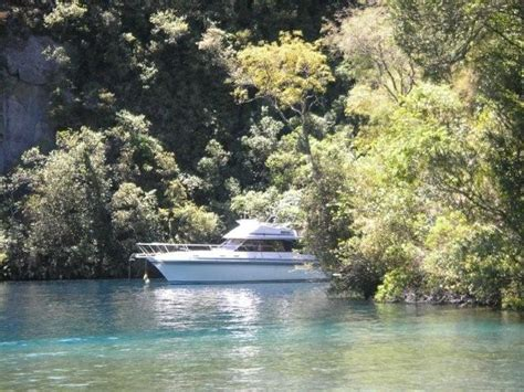 Boat Cruise Lake Taupo by Lake Taupo Trout Fishing Charter Lake Taupo Boat Cruise