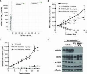 Fgfr Genetic Alterations Predict For Sensitivity To Nvp