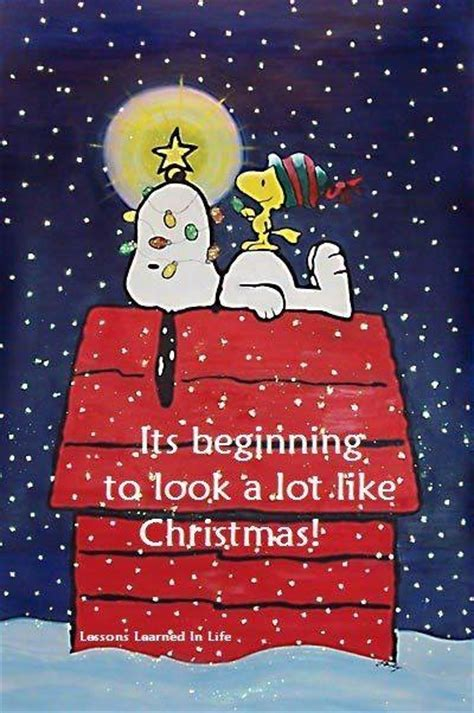 beginning   alot  christmas pictures