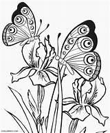 Coloring Pages Butterfly Butterflies Printable Cool2bkids sketch template