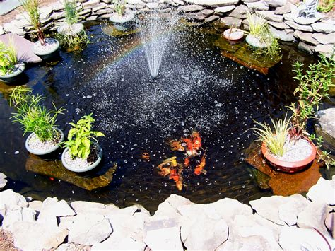 pond designs pictures pond designs and important things to consider interior design inspiration