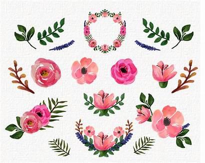 Clip Floral Watercolor Roses Freebies Clipartix