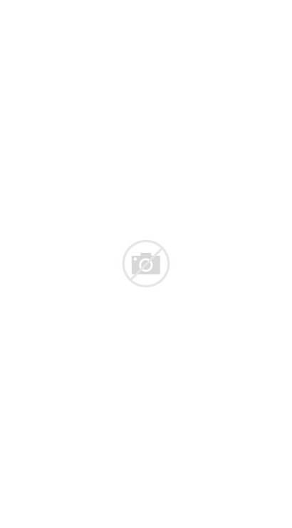 Giraffe Tattoo Tribal Designs Famous Animal Drawings