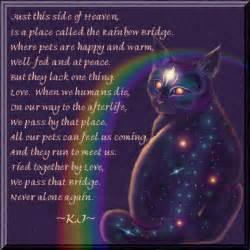 the rainbow bridge poem for cats rainbow bridge flickr photo