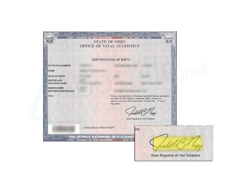 state  ohio birth certificate issued  judith  nagy