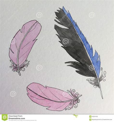 plume d oiseau dessin dessin 224 l encre de plumes d oiseau illustration stock