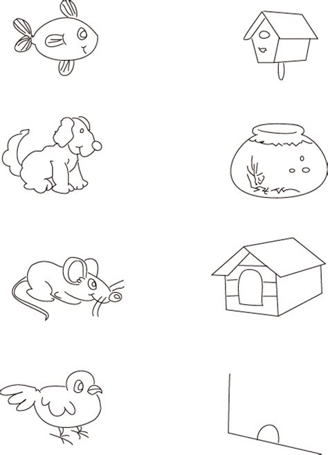 animals and their homes pictures worksheets the best and