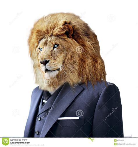 lion  suit isolated  white business concept stock