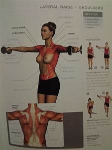 SHOULDERS: lateral raise (ant/medial/post deltoid ...