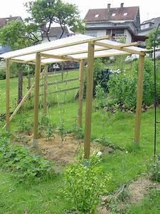 Tomatenzelt Selber Bauen : tomatenzelt selber bauen mein sch ner garten forum ~ Eleganceandgraceweddings.com Haus und Dekorationen