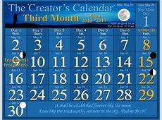 Welcome to the Creator's Calendar The Creators Calendar