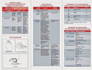 Download  Comprehensive Diabetic Foot Exam  Cdfe  Form And