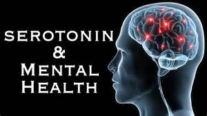 Image result for seratonin