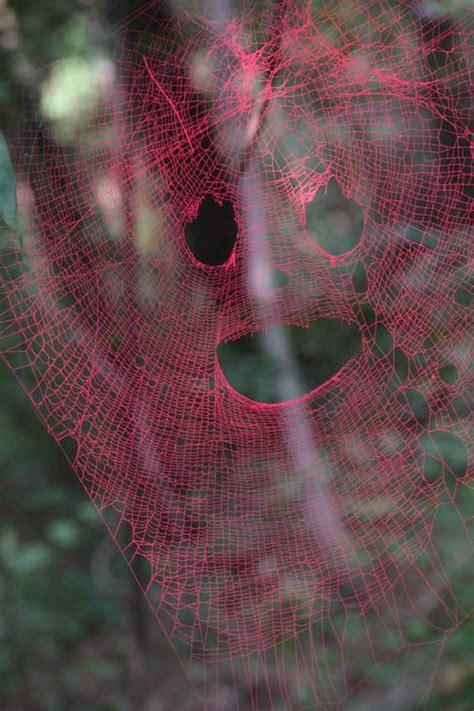 balai pour toile d araignee toiles d araign 233 es color 233 es 2tout2rien