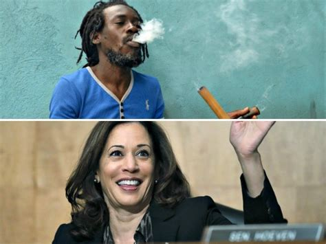 kamala harriss dad calls    perpetuating pot