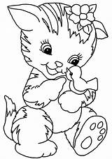 Cat Coloring Pages Bird Drawings sketch template