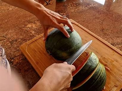 Watermelon Juice Usa Permaculture Harvesting Brief Recipe