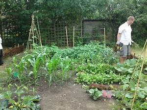 un petit potager de 30m2 quels legumes planter astuces With delightful idee amenagement jardin de ville 15 bordures bois