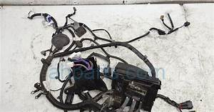 Nissan Altima Headlight Wiring Harnes