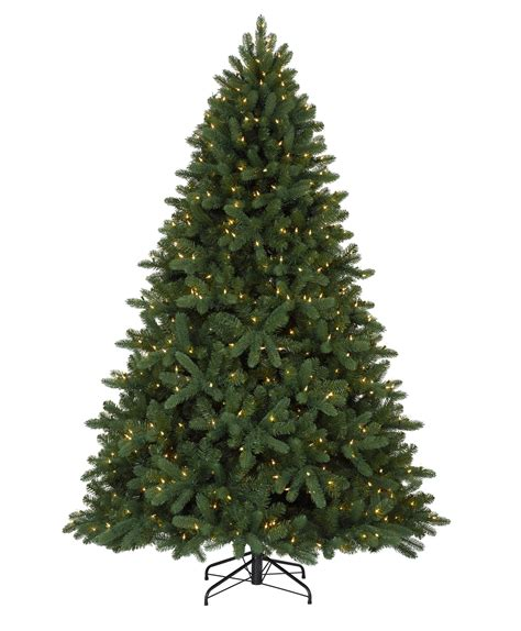 alberta spruce christmas tree tree classics