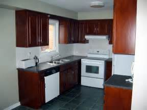 cabinets ideas staining kitchen cabinets black