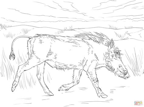 A 10 Warthog Coloring Pages A 10 Warthog Coloring Sheets Coloring Pages