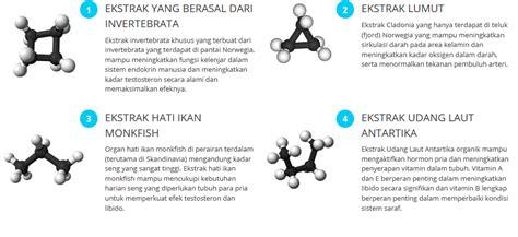 obat forex herbal asli harga promo obat forex