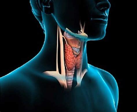 Tenebrous Tenets of Testicular Torsion