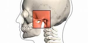 Kosti v lidském těle