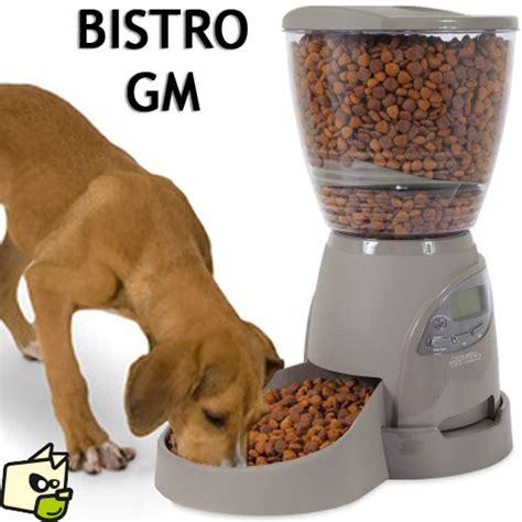 la pate pour chien distribution de croquettes par programmation automatique