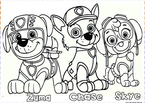 Thingiverse is a universe of things. Tactueux paw patrol printable - Mason Website