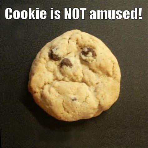 cuisine humour pics food pictures