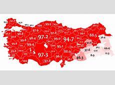 FileMother language in 1965 Turkey census Turkishpng