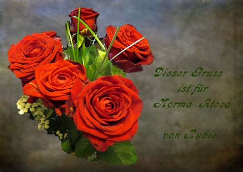 genesungswuensche foto bild rosen motive
