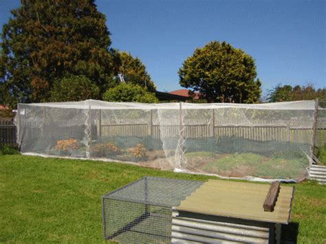 bird netting for garden vegetable garden 2 bird netting and shade cloth our