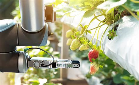 smart cities agriculture nokia dac