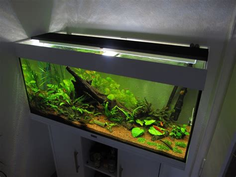 Aquarium Led Beleuchtung Selber Bauen Schullebernd's