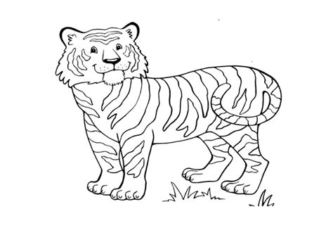 dibujos de tigres  colorear