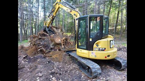 cat  removing stumps youtube