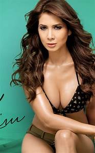 Kim Sharma Hot Photoshoot  Hd Wallpaper
